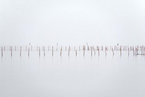 Venezia - La laguna verso Porto Marghera